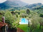 Private swimming pool, sun terrace within beautiful olive tree setting