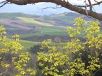 View from Agriturismo Le Capanne