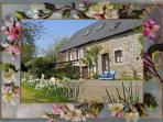 Charming gite with traditional features sleeps 2/4