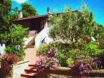 Romantic Tuscan cottage, sleeps four,  total priva