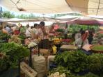 Thursday's market day.