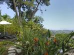 The lower garden and decking with stunning views