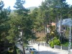 View from the back terrace