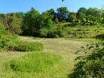 The lower meadow