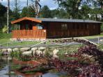 Birchlea Lodge  Dogs welcome Mountainbiking nearby