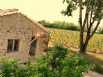 Your comfortable gite Muscat in a vineyard!