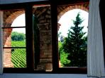 Tower room with astonishing sunsets on the surrounding vineyards!