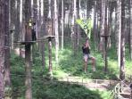 Go-Ape in Sherwood Forest