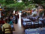 Local restaurant with flamenco dancers and serenaders!