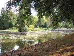 The Waterway in the Park