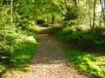 Nature Reserve Country walks near River Cottage HQ - minutes away