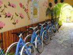 ENJOY OUR BIKES, POOL, HOT TUB IN A TROPICAL PRIVATE GATED PROPERTY.