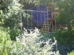 Climbing frame and swings at the top of the garden