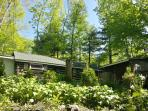 Painted Fern- Classic Log Cabin w modern amenities