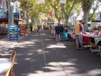 Traditional Market Agde