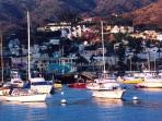 A Catalina Island Vacation Rental