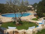 The swimming pool set in the fabulous garden