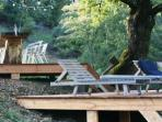 Terrace with lounge chairs under the oak