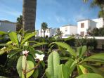 View of villas on San Andres Resort and the lush gardens