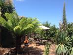 quiet secluded tropical garden lovely palms and exotics
