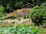 Cozy Cabin, Newly Remodeled, Fresh Eggs, Hdtv, Wifi, Waterwheel with Koi Pond