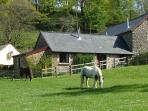 Fern Cottage - Riscombe Farm