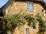 Roses on Gable Wall, Hoo Cottage