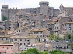 The nearby town of Bracciano and it's impressive medieval castle