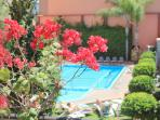 Lovely and quiet pool nearby - Daily access offered from 15 Feb. to 15 Nov