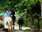 horseback riding and walks to horse