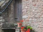 Geraniums on the steps leading up to the old Granary