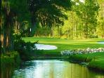 Saddlebrook 9 room SPA & Golf