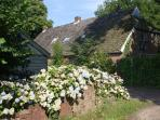 Farmhouse in Beautiful Rural Diever, Drenthe - Come Visit the Real Netherlands