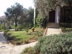 Olive Grove Gardens