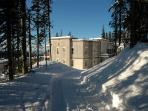 Location, location!  Ski in/out  Pet Friendly too!