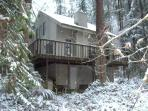 Snowline Cabin #92 - A lovely 2-story home thats pet-friendly! Sleeps 8!