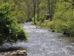 Paradise Valley Lodge - Creekside, Big Vacation Home with Fishing Onsite
