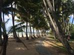 Palm Cove Paradise at Drift