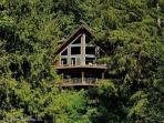 Silver Lake #7 - Unsurpassed lakefront views from this spectacular pet-friendly cabin!