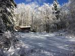 Cozy Affordable Cottage 4 Wooded Acres with Brook