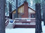 Cottage in the Pines