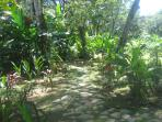 Winding paths to hidden private areas of the grounds