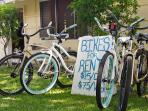 We prodive beach cruiser bike rentals for those looking to beat the Kailua traffic