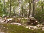 Private Picnic Area / Campfire Ring & Seating