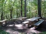 Private Picnic Area & Campfire Ring / Seating