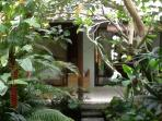 View from Main House across Koi Pond to Guest House