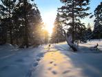 Sunset hike in the winter- beautiful and so quiet...