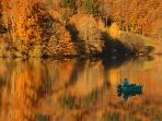 Limousin in the autumn