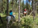 Rent a horse and ride through Yosemite Valley.
