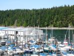 Ocean Front Suite - Excellent Nanaimo location!